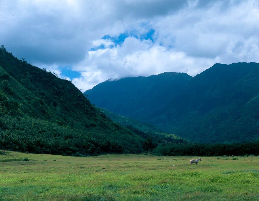 Big Island To Kauai